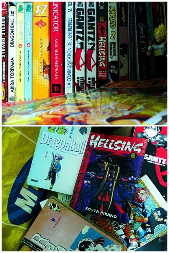 Voici tout ce qu'il me reste comme mangas. Quand je pense à ma bibliothèque d'il y a quelques années je n'ai que mes yeux pour pleurer.